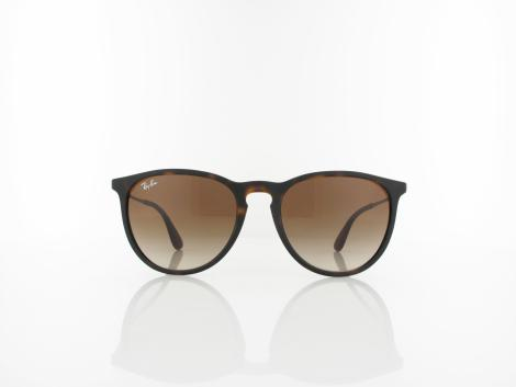 Ray Ban | Erika RB4171 865/13 54 | rubberized havana / brown gradient