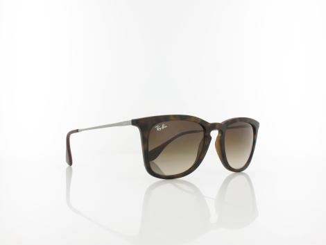 Ray Ban | RB4221 865/13 50 | dark rubber havana / brown gradient