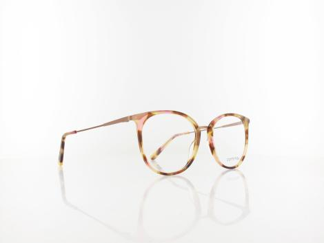 Comma | 70091 66 49 | transparent honey havana bronze